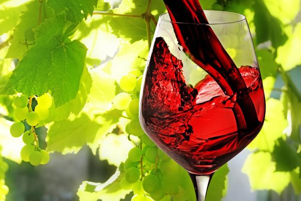 Bicchiere Vino Barbera d'Alba